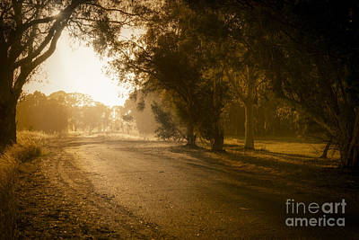 Photograph - Back Road Morning by Ray Warren