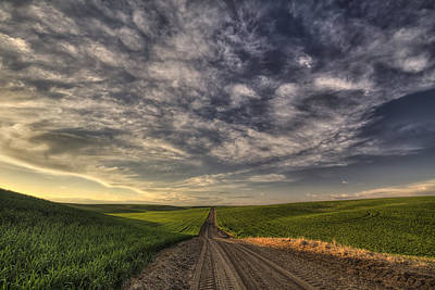 Photograph - Back Road Solitude by Mark Kiver