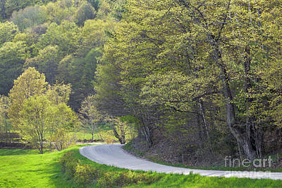 Photograph - Back Road Spring by Alan L Graham