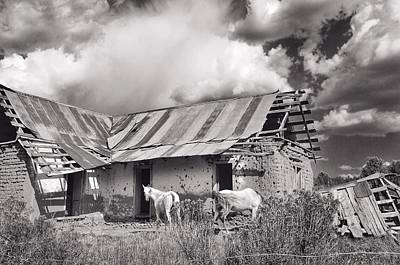 Photograph - Back Roads New Mexico - Old Barn And Horses by Debra Martz