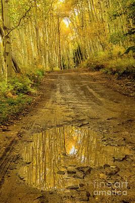 Photograph - Back Roads Of Colorado by Ronda Kimbrow