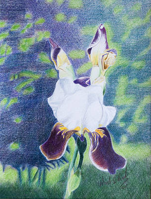 Painting - Back Yard Iris by Wade Clark