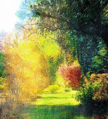 Photograph - Back Yard Path by Frank Bright