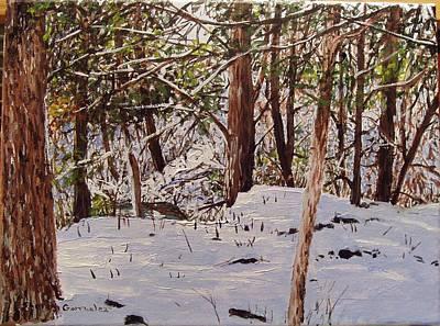 Back Yard Snow Art Print by Sharon  De Vore