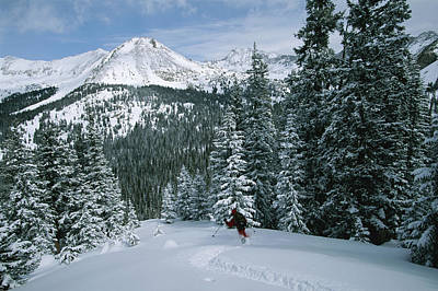 Natural Forces Photograph - Backcountry Skiing Into An Evergreen by Tim Laman