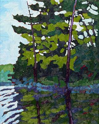 Morn Painting - Backlit Pines by Phil Chadwick