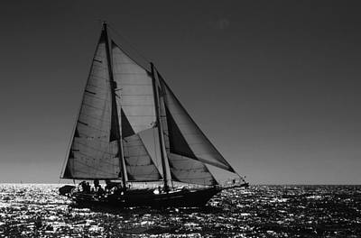 Photograph - Backlit Schooner 2 by David Shuler