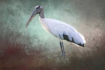 Photograph - Backlit Wood Stork by Donna Kennedy