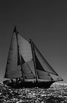 Photograph - Backlite Schooner by David Shuler
