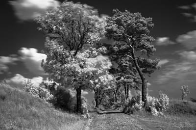 Photograph - Back Road Of My  Imagination In Black And White by Julis Simo