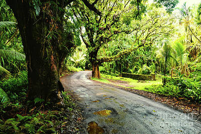 Photograph - Backroads Hawaii by M G Whittingham