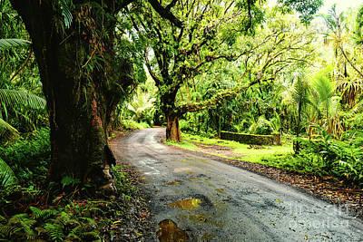 Photograph - Backroads Hawaii by M G Whittingham