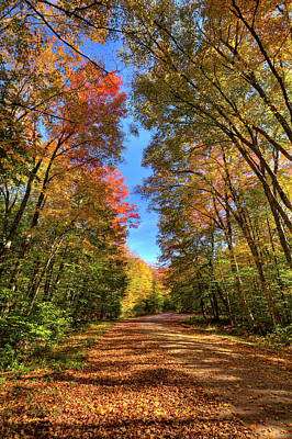 Photograph - Backroads Of Autumn by David Patterson