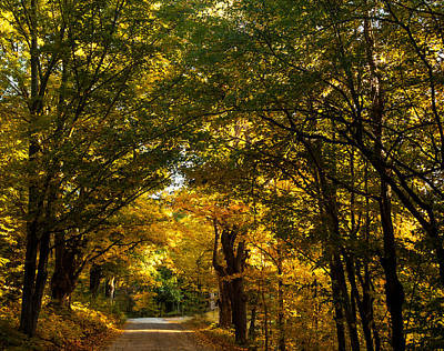 Photograph - Backroads Of New England by Sue OConnor