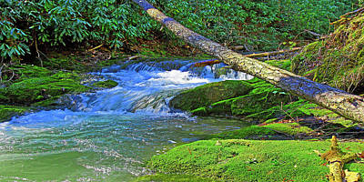 Photograph - Backwoods Stream by The American Shutterbug Society