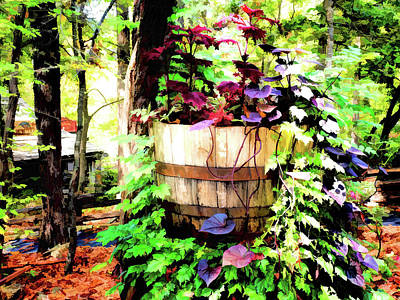 Colorful Photograph - Backwoods V3 by John Straton