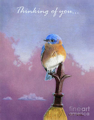 Backyard Bluebird- Thinking Of You Cards Original by Sarah Batalka