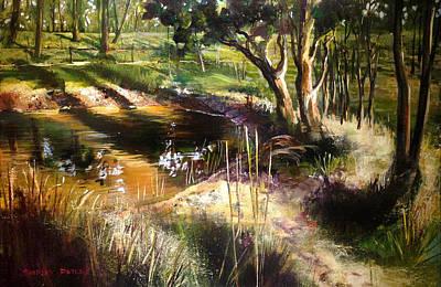 Backyard Dam At Mulgoa Art Print