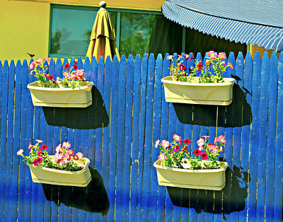 Flower Planter Photograph - Backyard Fence by Diana Angstadt