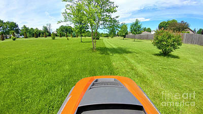 Photograph - Backyard Mowing by Ricky L Jones