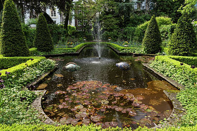 Photograph - Backyard Oasis Symmetry - Gracious Garden Fountain by Georgia Mizuleva