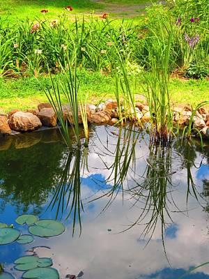 Photograph - Backyard Reflection by MTBobbins Photography