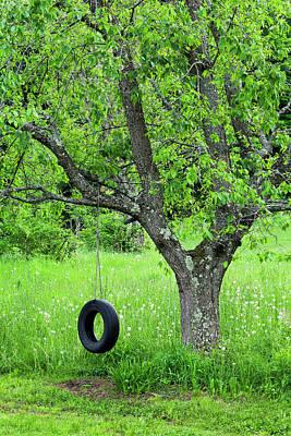 Photograph - Backyard Spring Swing by Alan L Graham