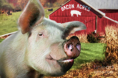 Bacon Acres Art Print by Lori Deiter