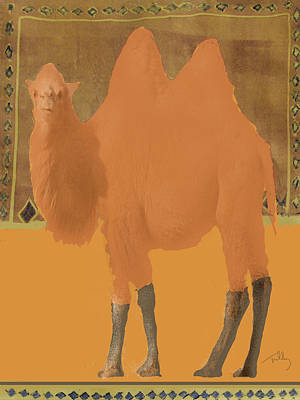Painting - Bactrain Camel by Thomas Tribby