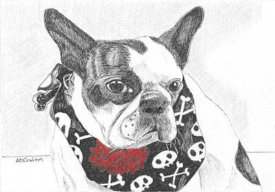 Drawing - Bad To The Bone by Arlene Crafton