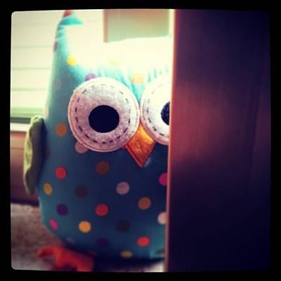 Lucky Owl Original