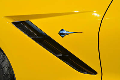Photograph - Badge Stingray by John Schneider