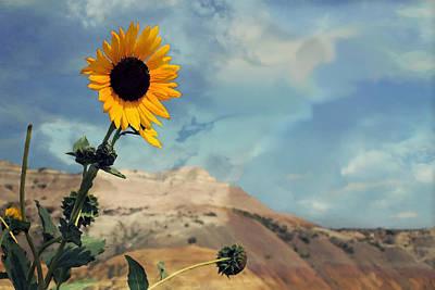 Photograph - Badlands Of South Dakota Yellow Flower by Dennis Buckman