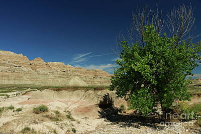 Photograph - Badlands Rugged Landscape by Christiane Schulze Art And Photography