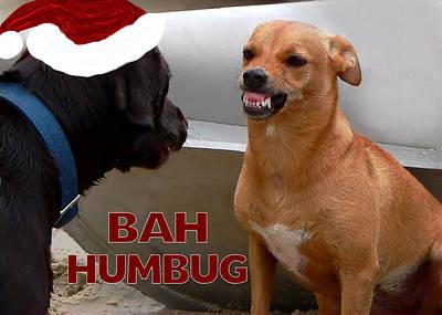 Humbug Photograph - Bah Humbug by Kathy K McClellan