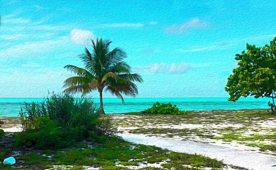 Digital Art - Bahama Beach Oil by Joe Paradis