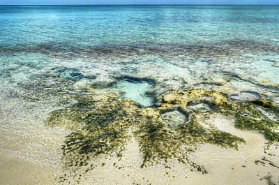 Photograph - Bahamian Scenery by Jeremy Lavender Photography