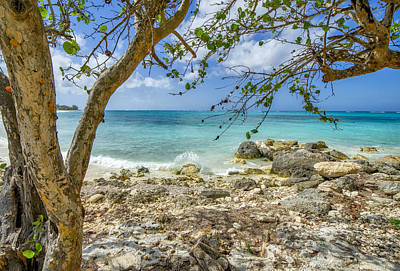 Photograph - Bahamian Scenery On New Providence Island by Jeremy Lavender Photography