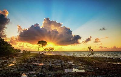 Photograph - Bahia Honda Key Sunrise by David Cote