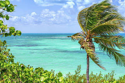 Photograph - Bahia Honda State Park Atlantic View by John M Bailey