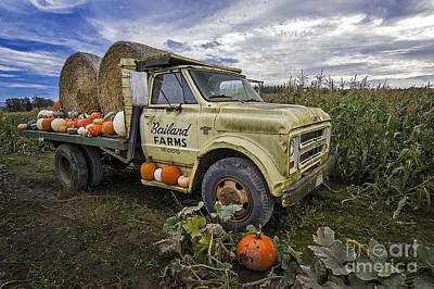 Photograph - Bailand Farms Chevy by Sonya Lang