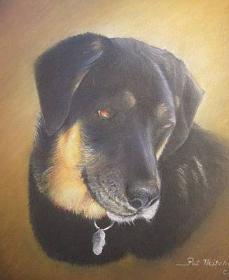 Painting - Bailey by Patricia Schneider Mitchell