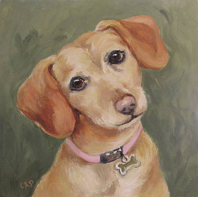Painting - Bailey - The Chiwienie by Cheryl Pass