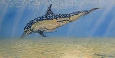 Baja Common Dolphin  Original