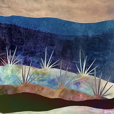 Indigo Photograph - Baja Landscape Number 2 by Carol Leigh