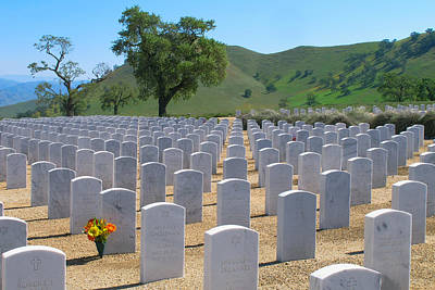 Photograph - Bakersfield National Cemetery by Ram Vasudev