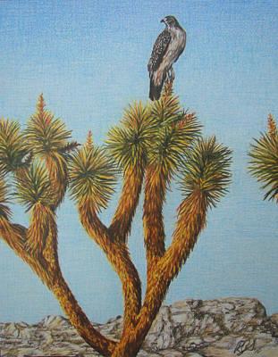 Stillness Drawing - Balance by Rebecca Steelman