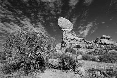 Photograph - Balance Rock And Pinyon In Bw by Mary Haber