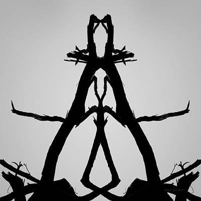 Photograph - Balanced I Bw by David Gordon