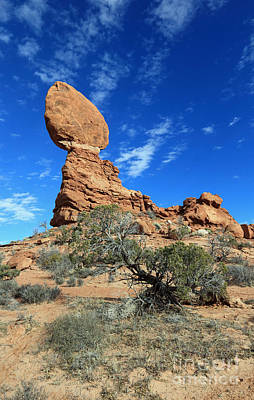 Balanced Rock And Desert Tree Art Print